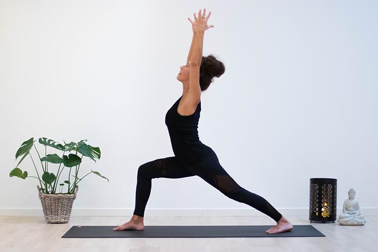 Yoga Byljungstrøm Priser
